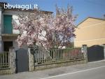 La Grande Magnolia