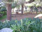 Residence La Giungla - Falerna Marina