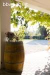 Agriturismo & Scuderia Fano's Farm